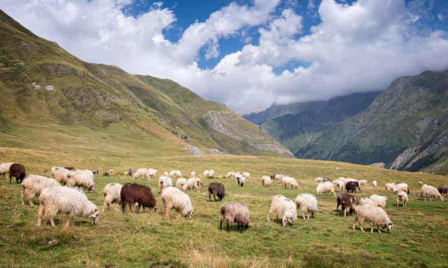 The Ossau valley in the Pyrenees
