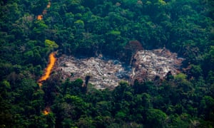 An deforested area of the Amazon in Pará state, Brazil