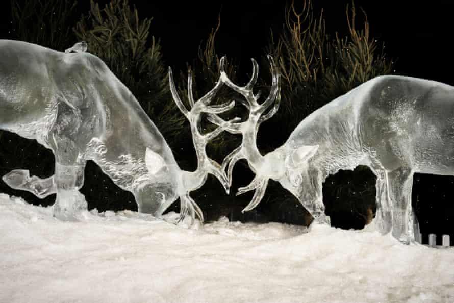 Reindeer in Manchester Ice Village