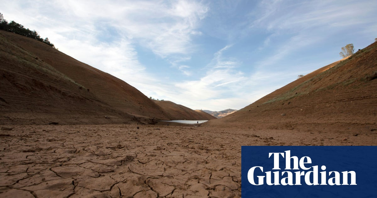 'This is really, really bad': scientists on the scorching US heatwave