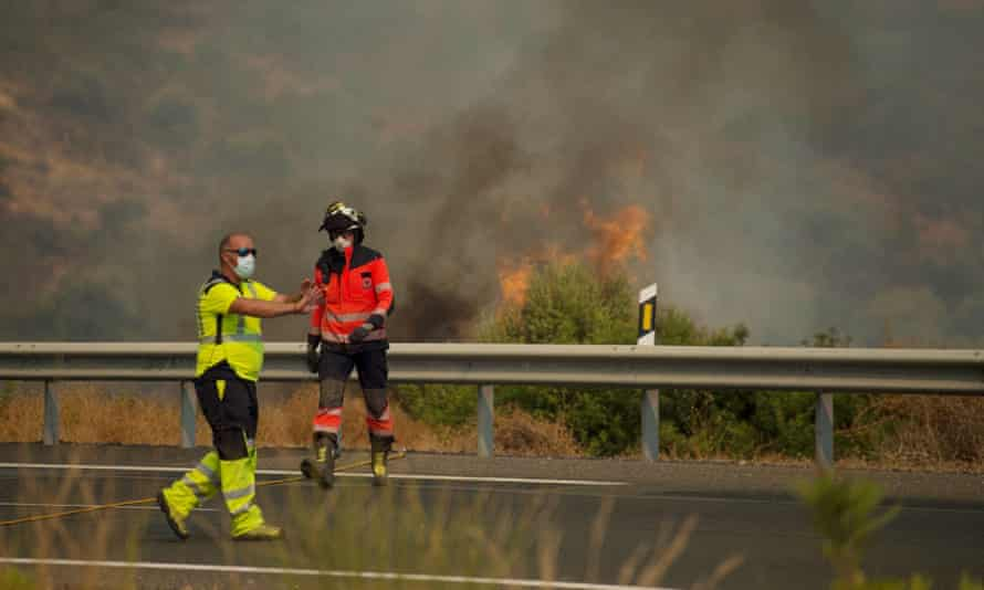 Firefighters tackle a wildfire in Estepona, Malaga province