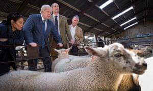 Johnson tours Gisburn cattle auction.