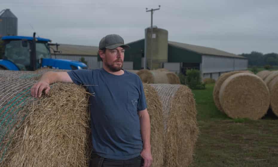 Tom Wright, Norfolk pig farmer