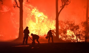 Global heating is being blamed for the wildfires that devastated much of New South Wales in Australia in recent months