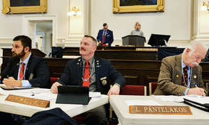 New Hampshire Republicans wear pearls during a bill hearing as gun control victims testify.