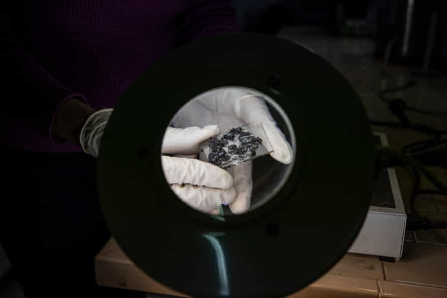 نمونه های گدازه برای اندازه گیری میکروسکوپ در مopeسسه آتشفشانی بر روی اسلاید نصب شده اند