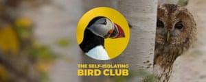 Self-isolating bird club