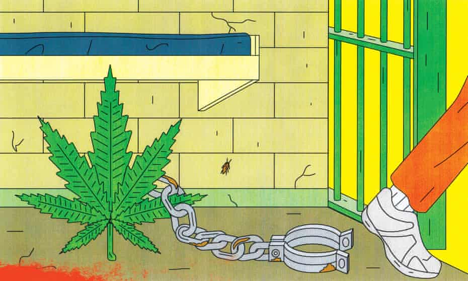 In 2017 there were more than 650,000 marijuana arrests in the US, according to calculations by the legalization activist and journalist Tom Angell.