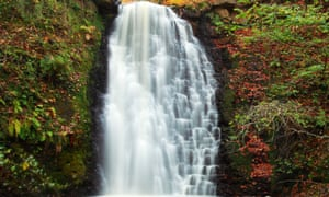 Autumn at Falling Foss, Sneaton Forest, in the North York Moors national park
