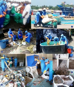 Suchitwa Sagaram (Clean Sea) scheme workers sort, clean and shred plastic waste. The project creates jobs for women in a male-dominated sector.