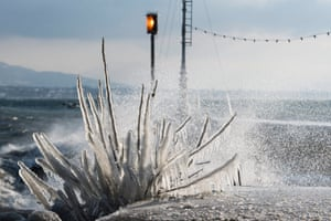 A shrub is covered in ice after the strong wind at Lake Geneva, Switzerland