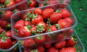 British-grown strawberries will be in UK supermarkets this week.