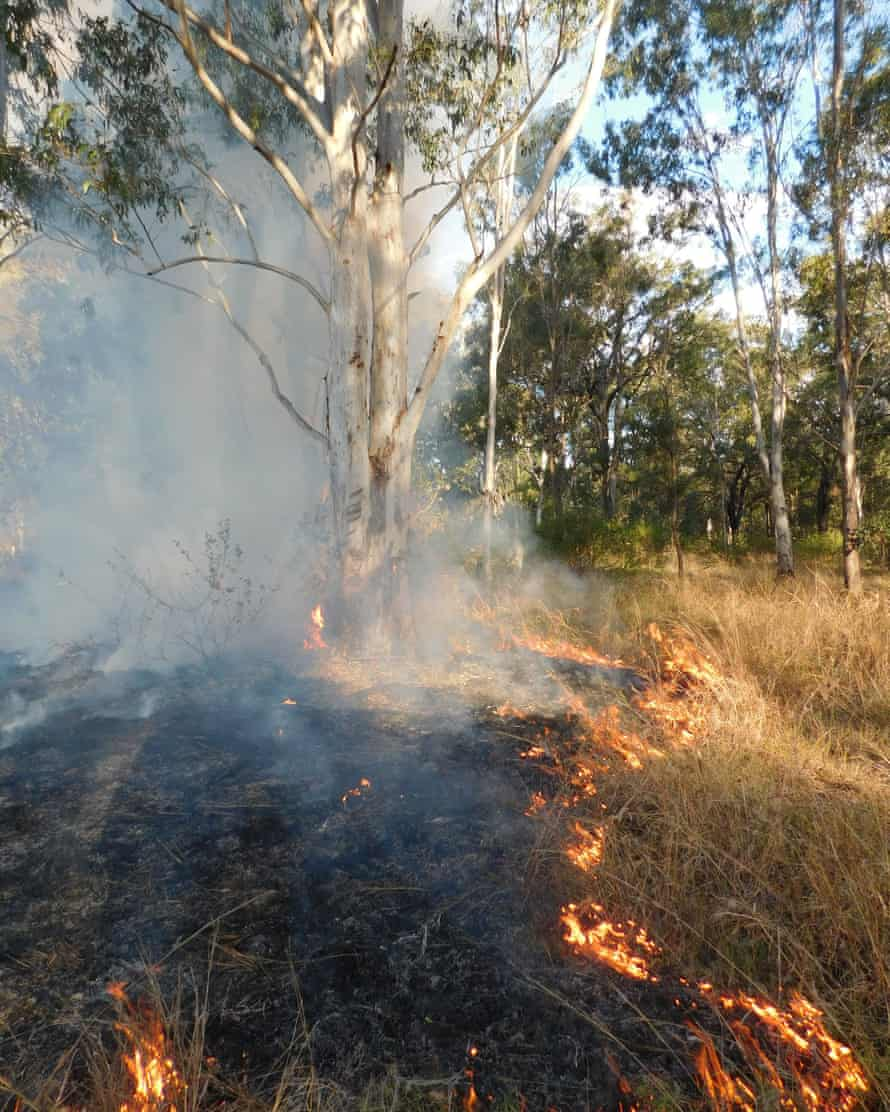 A small cool burn managed by Indigenous firesticks alliance.