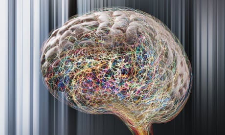 Creative thought has a pattern of its own, brain activity scans reveal