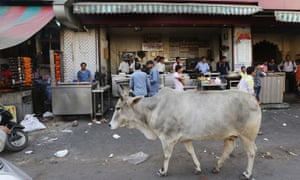 Muslim man dies in India after attack by Hindu 'cow