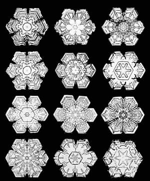 Snowflakes, photographed by Wilson Bentley in the early 1900