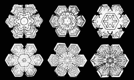 Crystal castles: the first snowflake photos – in pictures