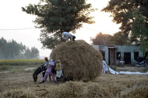 Jalandhar, India: Villagers hold onto an overloaded horse cart