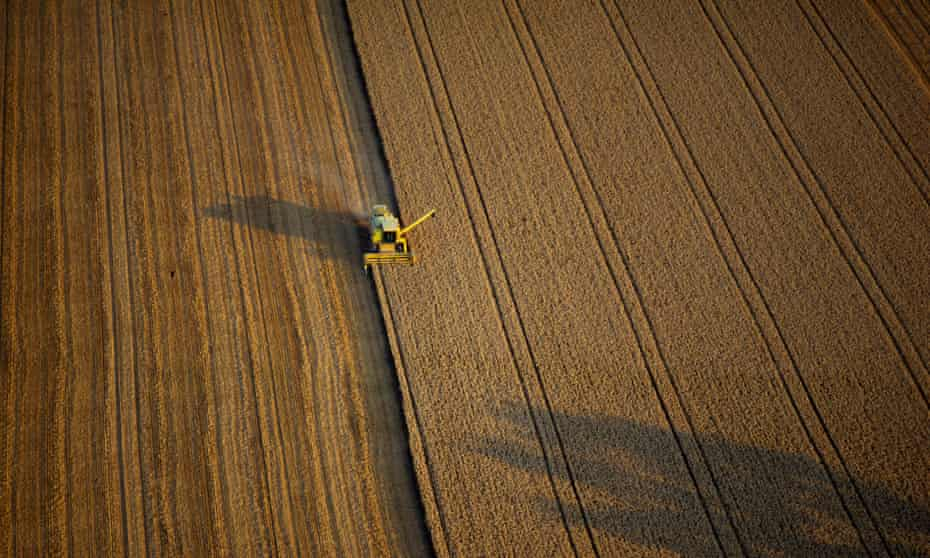 Industrial-style agriculture, England. A government review is to look at interlocking issues of farming, the environment, health and commerce.