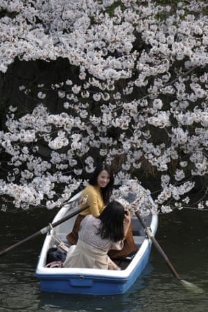 Rowing under the trees in Tokyo