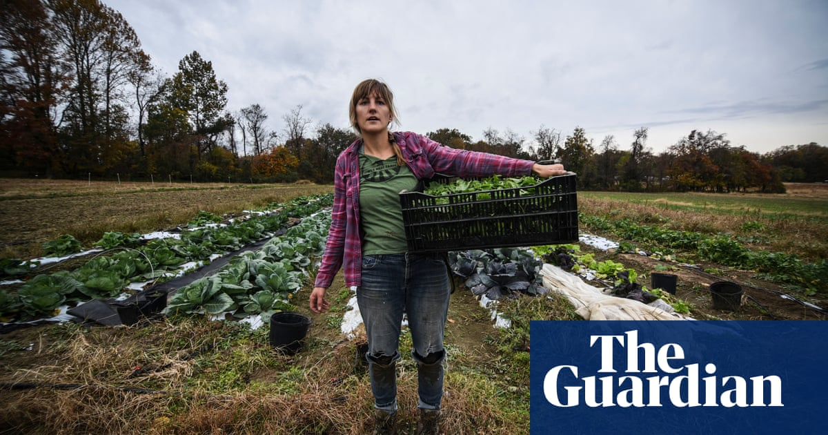 Back to the land: are young farmers the new starving artists?