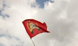 Tamil Tiger flag