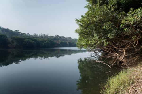 The planned Koukoutamba dam would flood an area twice that of San Francisco within the park, forcing the displacement of 8,700 people and causing irreparable damage to species that cannot easily be relocated.