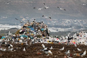 Gulls fly around plastic waste at a landfill site in Cape Town, South Africa. According to an Ellen MacArthur Foundation report, there will be more plastic in the ocean than fish by 2050. Africa is one of the most affected continents due to its extensive coastline and underdeveloped waste systems that allow plastic waste to easily enter the ocean.