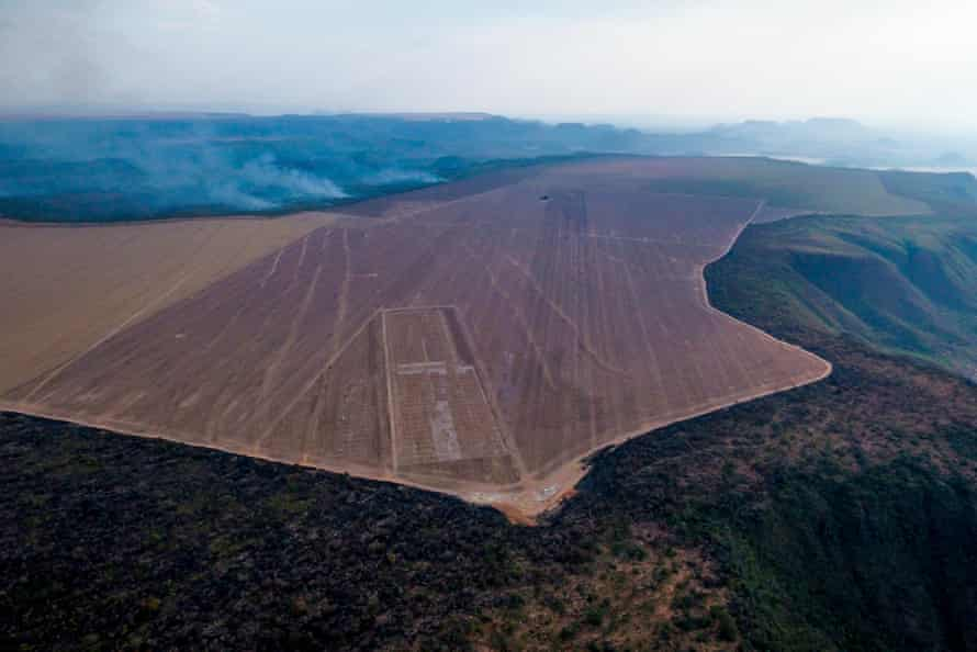 Farmers can legally cut and burn a higher proportion of trees in the Cerrado savannah compared with its neighbour, the Amazon.