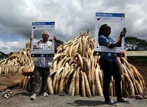 Conservationists pose with cut-out placards bearing the message '#WorthMoreAlive', advocating for an end to elephant poaching