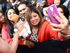 Grumpy Cat poses with fans at the 2014 MTV Movie Awards at Nokia theatre in Los Angeles in April 2014