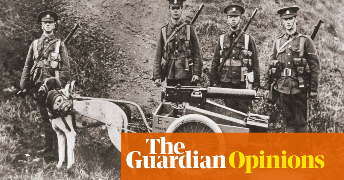 The animal victims of the first world war are a stain on our conscience | Philip Hoare