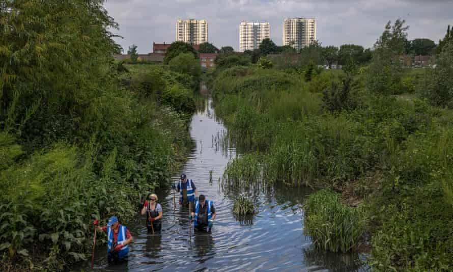 Volunteers clean up a tributary of the River Lea in Enfield.