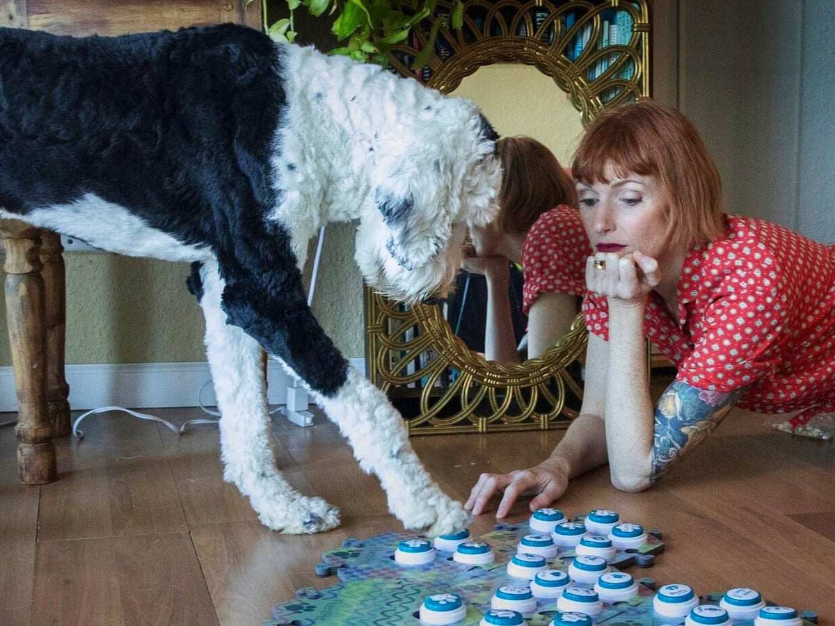 Bored? These Americans are teaching their dogs to talk | Life and style |  The Guardian