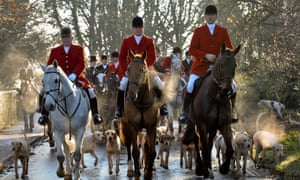 'Who thinks foxhunting should be illegal anyway? Well, you do.'