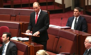 Fraser Anning speaks in the Senate. The race discrimination commissioner, Chin Tan, has backed calls for a crackdown on hate speech in parliament