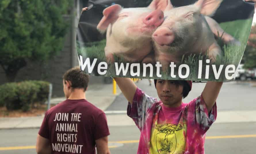Vegan protesters have staged weekly rallies outside the shop as part of their quest to make Berkeley the 'first city free of violence toward animals'.