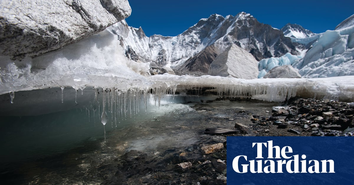 A third of Himalayan ice cap doomed, finds report | Environment