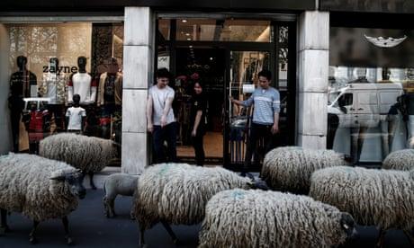 The urban shepherd of Paris – photo essay