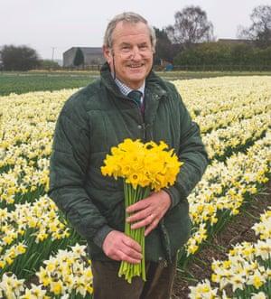 Johnny Walker holds 'Tamara' daffodils.