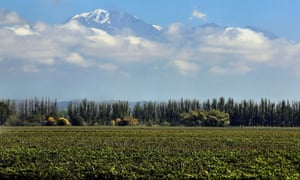 A winery in the Mendoza province of Argentina.