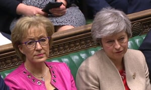 Andrea Leadsom and Theresa May pictured together in the Commons earlier this year.
