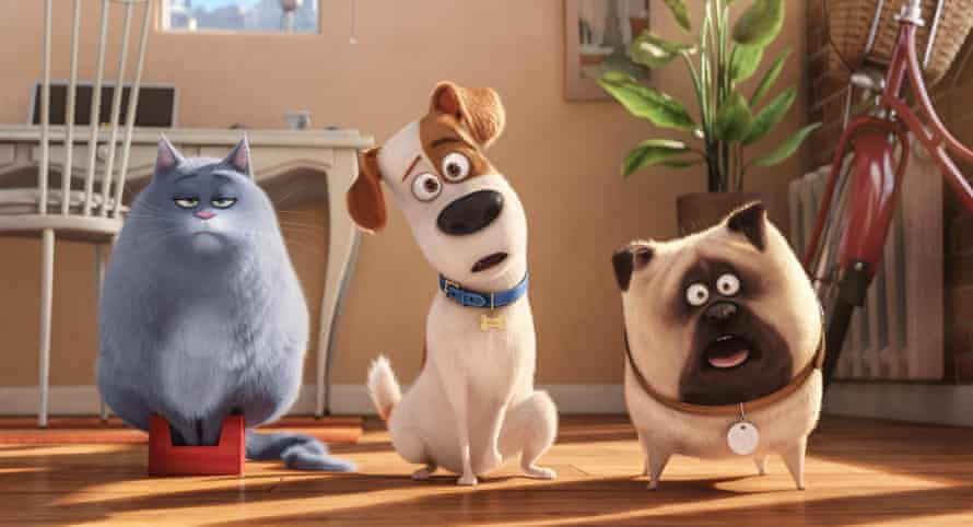 A pet's eye view of the world from the film The Secret Life of Pets.