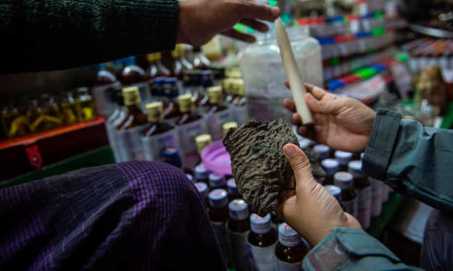 A vendor tries to sell a chunk of dried elephant skin and an ivory tusk at a traditional medicine shop in Myanmar.