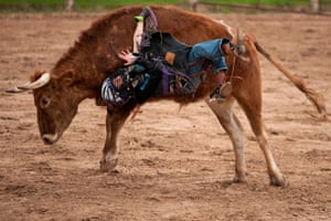 Sterling Huitron, 10, is bucked off a mini bull during a competition in Bandera, Texas