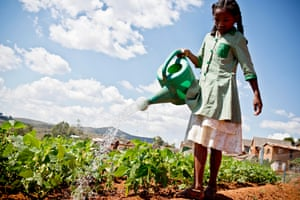 A young girl waters the garden at Masindray primary school, in Antananarivo, Madagascar
