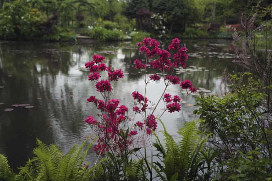 The gardens at Giverny that inspired Monet's paintings