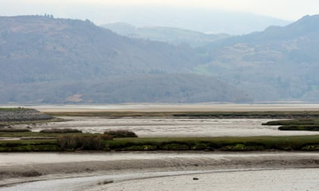 Country diary: perplexed by a sign of the tides