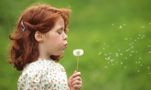 a red haired girl blowing on a dandelion clock in a meadow