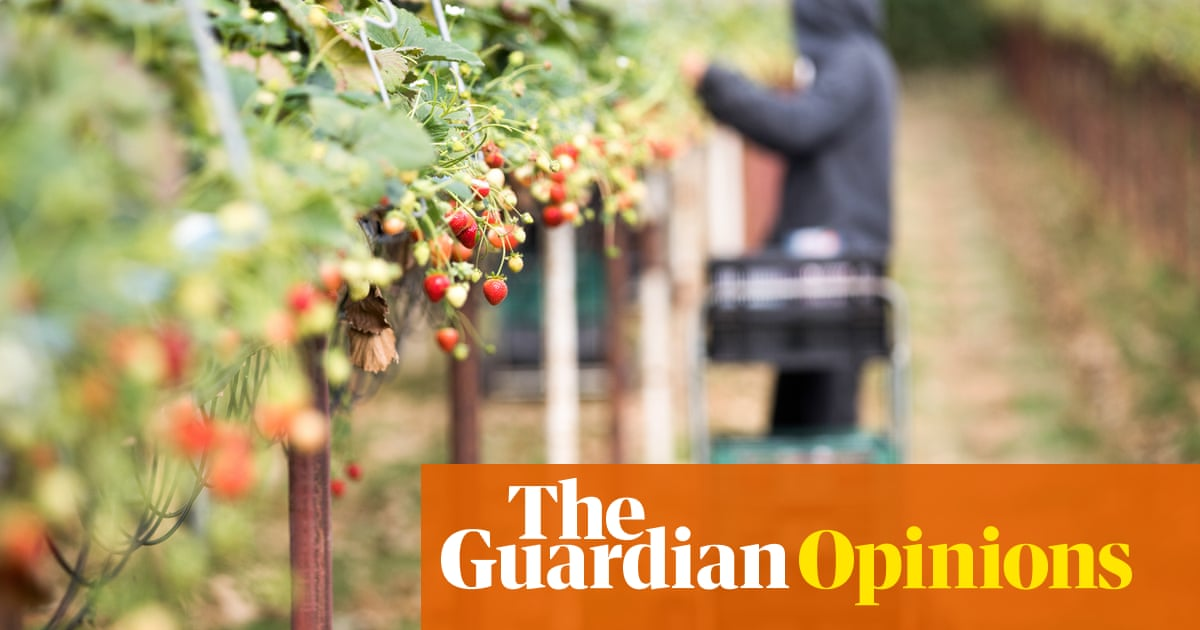 It was Tory governments that created the low-wage economy – not immigration